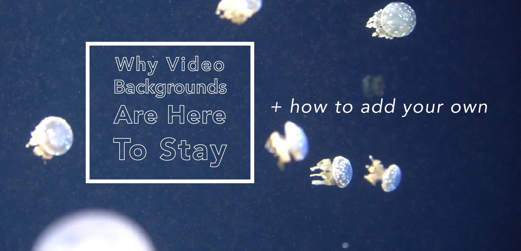 Add A Video Strip to Your Website.com Site